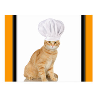 Señor Cat Chef To You Postal