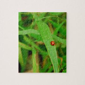 Señora Bug en hierba Puzzle