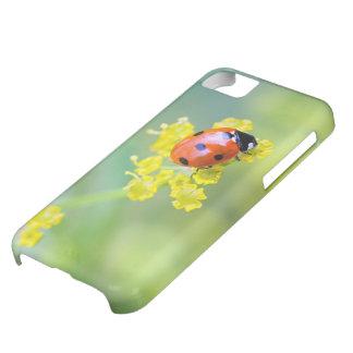 señora en el top carcasa para iPhone 5C