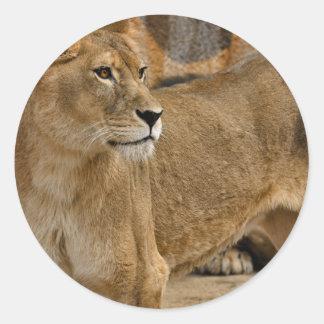 Señora Lioness Sticker Etiquetas Redondas