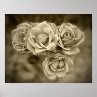 Sepia de los rosas del vintage póster