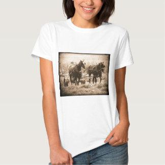 Sepia de trabajo de los caballos de Amish Camisetas