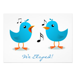 Serenata del Bluebird Eloped Comunicado Personal