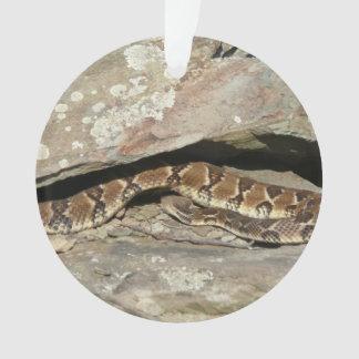 Serpiente de cascabel en el parque nacional de adorno