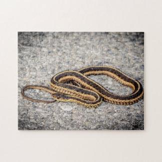 Serpiente de cinta del este (serpiente de liga) puzzle