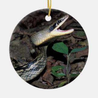 Serpiente de rata de la belleza adorno navideño redondo de cerámica