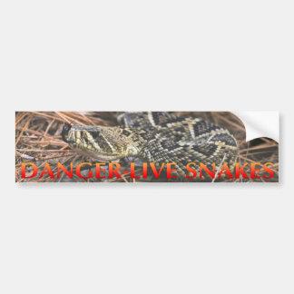 Serpientes vivas del peligro pegatina para coche
