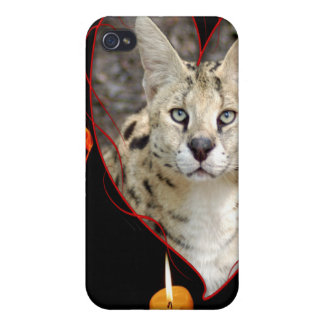 Serval africano iPhone 4 protectores
