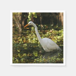 Servilleta De Papel Gran Egret que vadea en los marismas