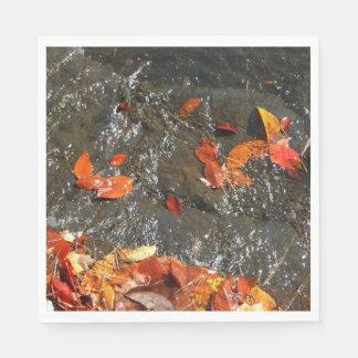 Servilleta De Papel Hojas de la caída en fotografía del otoño de la