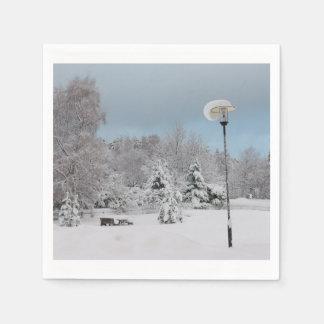 Servilleta De Papel País de las maravillas del invierno
