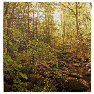 Servilleta De Tela Árboles del otoño en el arroyo de Willard