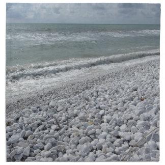 Servilleta De Tela Costa de una playa en un día nublado en el verano