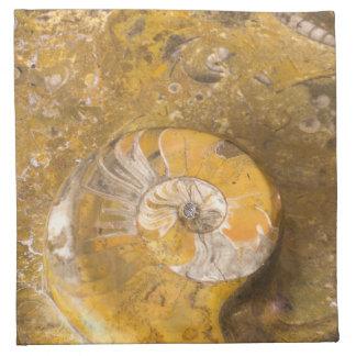Servilleta De Tela Cuenco tallado hecho de fósiles en roca