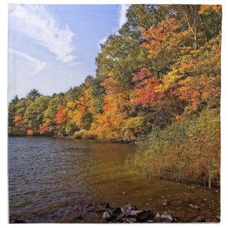 Servilleta De Tela Follaje de otoño en la charca del punto