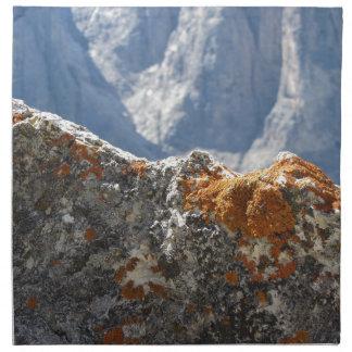 Servilleta De Tela Liquenes anaranjados que crecen en cara de la roca