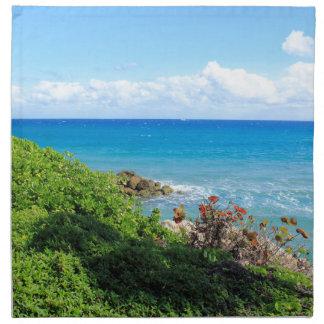 Servilleta De Tela rocky-foliage-coast-deerfield-beach-4s6490