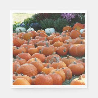Servilleta Desechable Fotografía de la cosecha del otoño de las