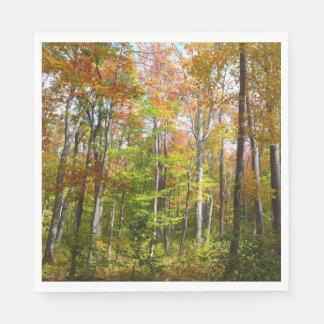 Servilleta Desechable Fotografía del paisaje del otoño del bosque I de
