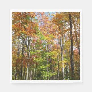 Servilleta Desechable Fotografía del paisaje del otoño del bosque II de
