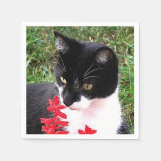 Servilleta Desechable Gato impresionante del smoking en el jardín