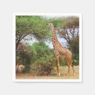 Servilleta Desechable Jirafa de Maasai