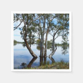 Servilletas De Papel Belleza de un árbol de goma,