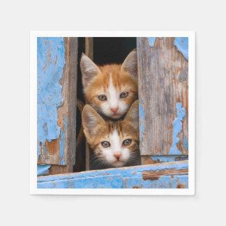 Servilletas De Papel Gatitos lindos del gato en una foto azul de la