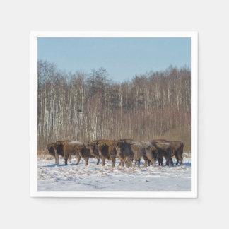 Servilletas De Papel Manada del bisonte