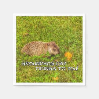 Servilletas De Papel ¡Noticias del día de la marmota a usted!