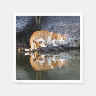Servilletas De Papel Reflexión del gato en la foto divertida //del