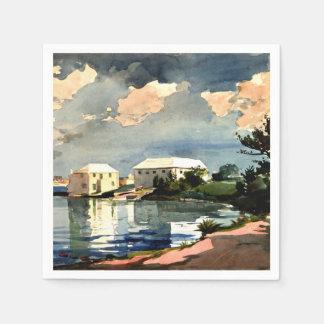 Servilletas Desechables Caldera de la sal, pintura de Bermudas - de