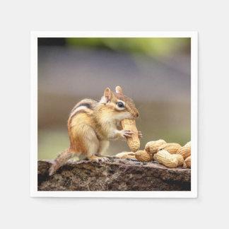 Servilletas Desechables Chipmunk que come un cacahuete