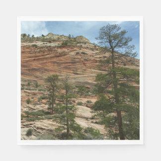 Servilletas Desechables Paredes gastadas de la roca en el parque nacional