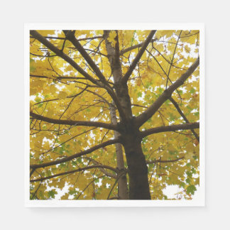 Servilletas Desechables Pares de naturaleza amarilla del otoño de los