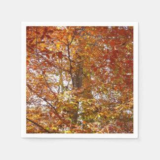 Servilletas Desechables Ramas de la naturaleza anaranjada del otoño de las