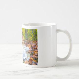 Seta comestible del porcini en piso del bosque en taza de café