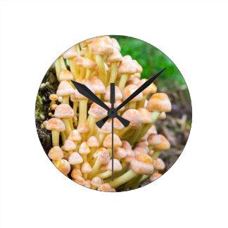 Setas del amarillo anaranjado del grupo en bosque reloj redondo mediano