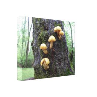 Setas en árbol impresión en lienzo