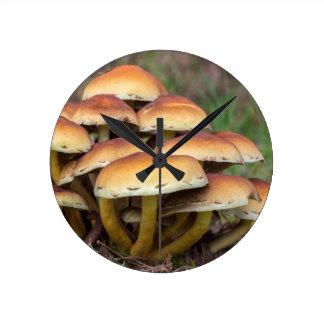 Setas marrones del grupo en bosque de la caída reloj redondo mediano