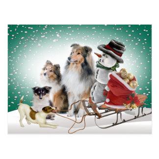 Sheltie, Jack Russell y tarjetas de Navidad del