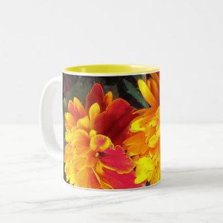 Siempre en taza de la maravilla de la floración