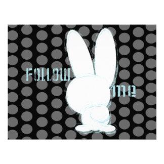siga el conejo blanco comunicado