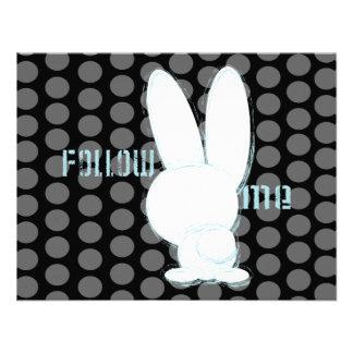 siga el conejo blanco comunicados personales