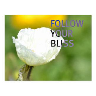Siga su tulipán del blanco de la dicha postal