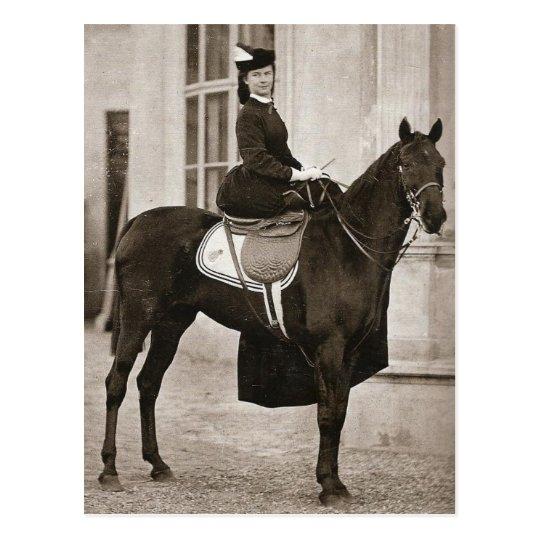 Silla para montar a mujeriegas 024ss del caballo postal zazzle - Silla montar caballo ...