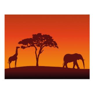 Silueta africana del safari - postal