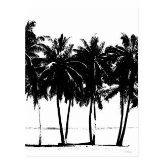 Silueta blanca negra de las palmeras postal