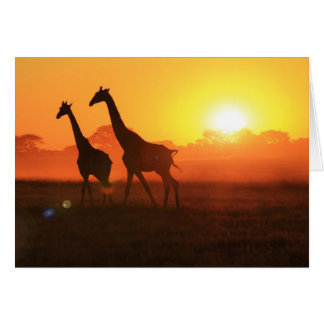 Silueta de la jirafa - la vida es hermosa tarjeta de felicitación