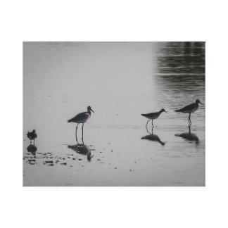 Silueta de la playa del pájaro en lona lienzo
